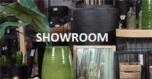 Showroom video